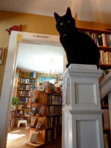Felix bookstoricus.